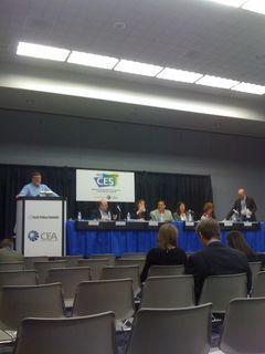 CES_TPS Panel